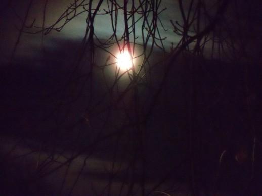 Tim Burton moon - 1