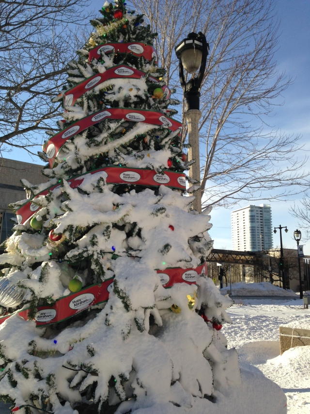 Snow-flocked Christmas tree at Red Arrow Park