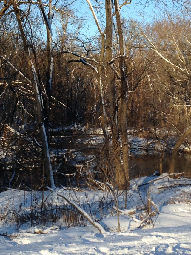 Menomonee River, early morning January [3]