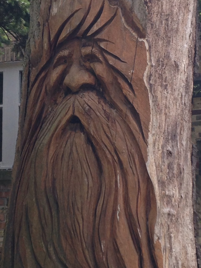 carved tree art - bearded man in stump
